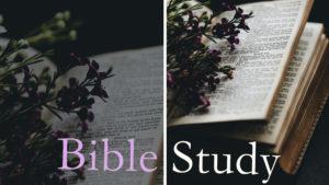 Bible Study (Via Zoom)